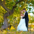 Couple newlyweds standing in autumn forest at the wedding, the g — Stock Photo #16207737