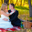Couple sitting in the autumn woods, the groom looks at the bride — Stock Photo #16207765