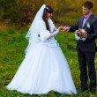 Stock Photo: Groom wears ring bride newlyweds standing on green grass in autu