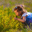Little baby girl is studying touching look at a yellow flower in — Stock Photo