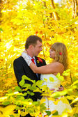 Couple at the wedding are in the yellow autumn woods of the groo — Foto de Stock