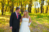 Couple at the wedding are the yellow autumn forest, the groom lo — Stock Photo