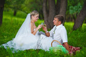 Couple at the wedding the newlyweds a picnic in a forest clearin — ストック写真