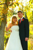 Couple bride and groom stand in autumn forest near tree at sunse — Fotografia Stock