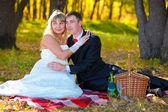 Пара невеста и жених желтый Осенний лес, сидя на одеяло — Стоковое фото