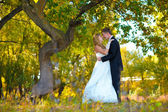 Couple newlyweds standing in autumn forest at the wedding, the g — Stock Photo