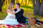 Couple sitting in the autumn woods, the groom looks at the bride — Stock Photo