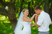 Groom kissing hand of bride, newlyweds couple are in green fores — Stock Photo
