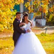 Bride and groom newlyweds standing next to tree in autumn with y - Stock Photo