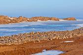 Coast of antarctica arctic ocean water ice — Stock Photo