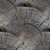 Seamless texture background old wood cracks — Stock Photo