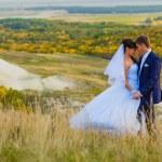Bride and groom outdoor standing in yellow field hug, portrait n — Stock Photo