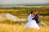 Bride and groom outdoor standing in a yellow field hug, newlywed — Stock Photo