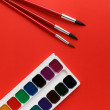 Brush red on texture art palette background watercolor — Stock Photo