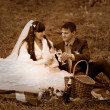 Stock Photo: Retro black and white photo of sepia bride and groom at wedding