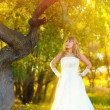 Sunlight bride on wedding day is in a forest in autumn, near the — Stock Photo