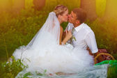 Sunlight bride and groom at wedding in green forest sitting on p — Stock Photo