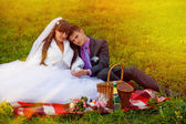 Sunlight bride and groom wedding in green field sitting on picni — Stock Photo