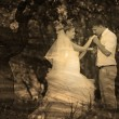 Retro sepia black and white photo bride groom kissing hand of bl — Stockfoto
