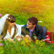Sunlight bride and groom at picnic in autumn are couple on green — Stock Photo #24489453