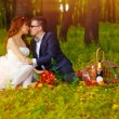 Royalty-Free Stock Photo: Couple sunlight bride and groom sitting on the green grass, a pi