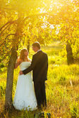 Couple sunlight bride and groom stand in autumn forest near the — Stock Photo