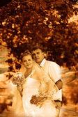 緑の夏の森、bri ではレトロ セピア色の写真のカップルの結婚式 — ストック写真