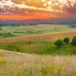 Stock Photo: Landscape sunset sky green grass summer nature meadow hill panor