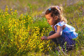 Girl little flowers yellow field child kid spring beautiful mead — Stock Photo