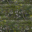 Stock Photo: Seamless moss old green wall stone pattern mold gray texture bac
