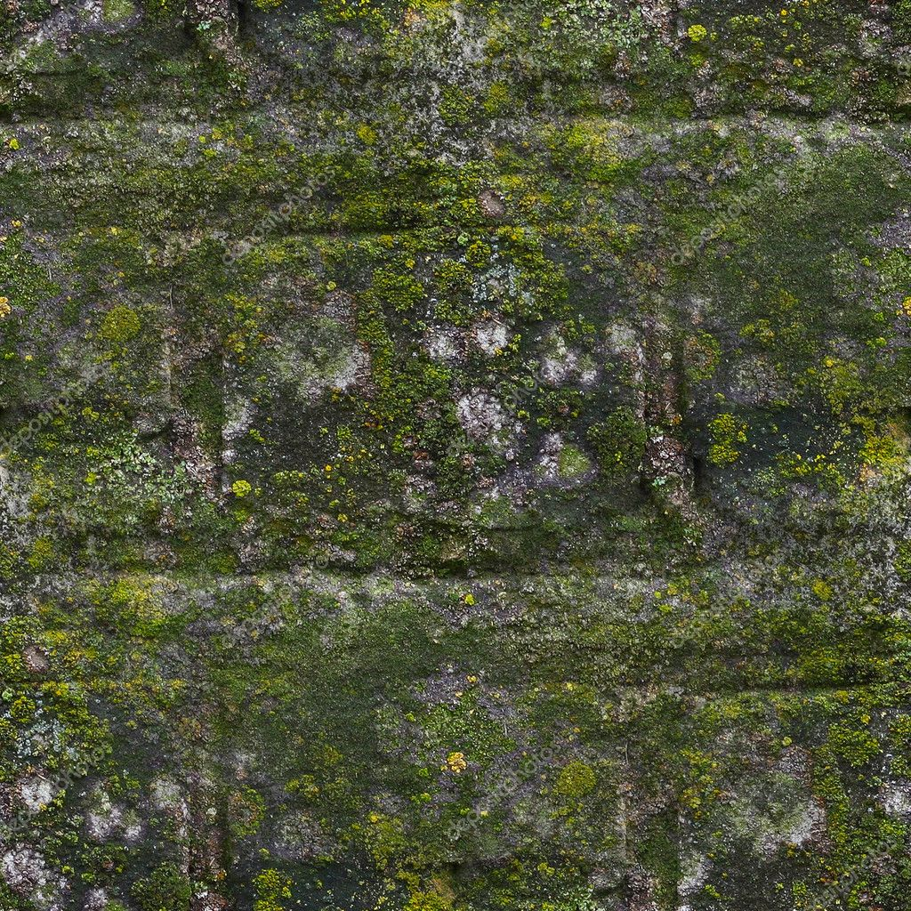 Seamless moss old green wall stone pattern mold gray ...