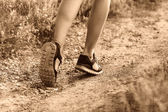Sport chaussures femmes grandes pattes en cours d'exécution, d'exercer et de marcher, f — Photo