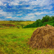 Summer landscape on the field worth stack hay bale blue sky beautiful rural meadow — Stock Photo