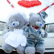 Bear toys for decoration wedding car — Stock Photo
