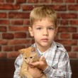 Boy with a small kitten - Stock Photo