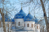 Cathedral at St`George monastery, Novgorod the Great, Russia — Photo