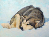 Painting Husky in the Snow — Stock Photo
