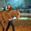 International Horse Exhibition — Stock Photo #25162757