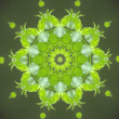 Green circular pattern - Stock Photo