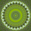 Green circular pattern — Stock Photo