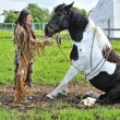 American Indian and horse — Stock Photo