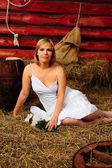 Photo of beautiful girl posing on the farm — Stock Photo
