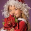 Christmas portrait of girl — Stock Photo #27650561