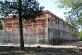 House under constrution in the forest — Stock Photo