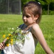 Little girl on the grass with  flowers — Stok fotoğraf