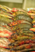 Fresh fish market — Stockfoto