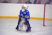 Children playing hockey — Stock Photo