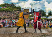 Medieval knights fighting — Stock Photo