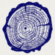 Cross section of tree stump — 图库照片 #12664008