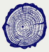 Cross section of tree stump — Stock Photo